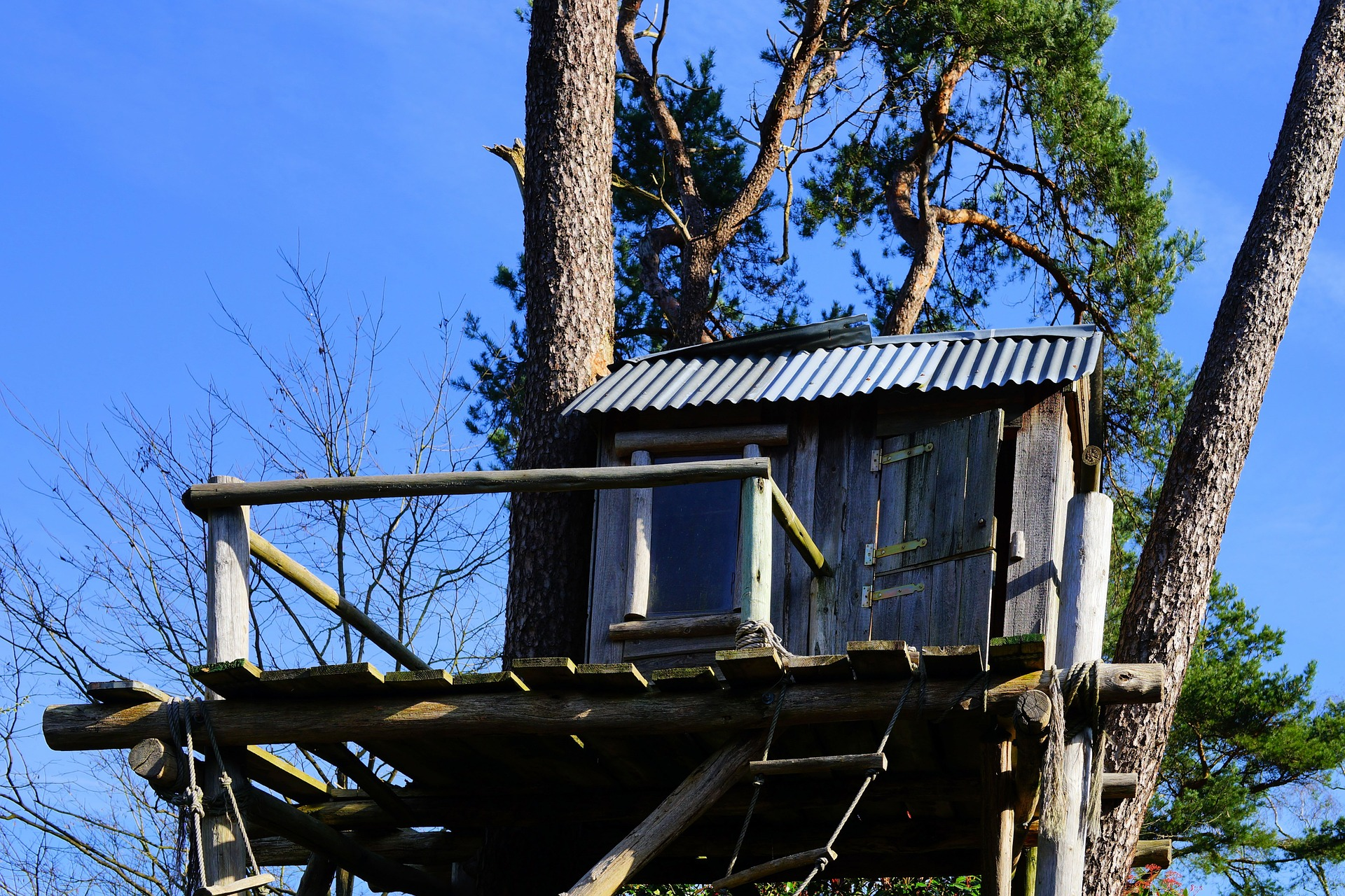 Your Guide To Building A Treehouse
